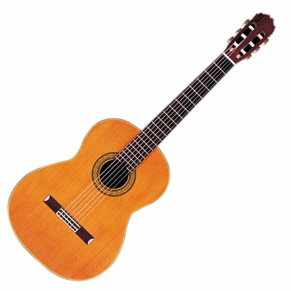Classical guitar, wedding music, reception entertainment, acoustic guitar